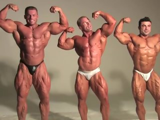 muscle three